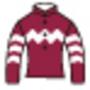 2010年安田記念参考レース:香港馬3頭