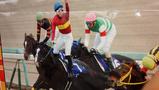 有馬記念2016ゴールドアクター吉田隼人騎手の負傷の影響は?落馬後全騎乗成績を検証