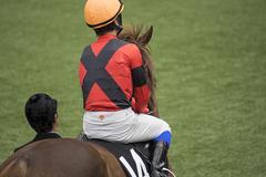 有馬記念2016追い切り調教診断:ゴールドアクター、有馬記念連覇グラスワンダー彷彿とさせる力強い動き