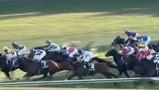 阪神ジュベナイルフィリーズ2016予想:競馬ナンデ編集長本命はリスグラシュー!強い馬が勝つ阪神マイル