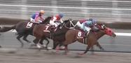 カフジテイク福永騎手1番人気!フェブラリーステークス2017出走予定馬・予想オッズ(優先出走権獲得)