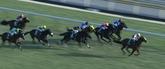 四位騎手3勝目へスワーヴリチャード1番人気!日本ダービー2017予想オッズ・出走予定馬